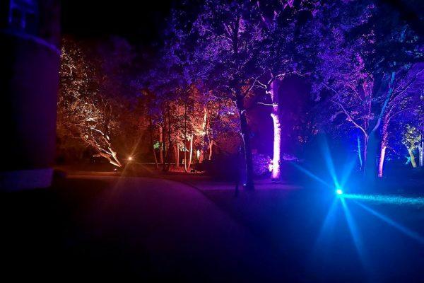 kunst-im-schloss-spyker-park-im-licht-auf-ruegen
