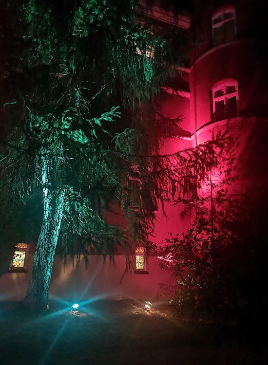 kunst-im-schloss-spyker-park-im-licht-glowe-ruegen